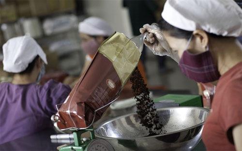 Sản lượng cà phê Việt Nam có thể rớt xuống đáy 8 năm