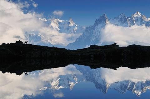 Sự tương phản về hình khối và màu sắc trong bức ảnh chụp dãy núi Alpes tại Pháp của nhà nhiếp ảnh Jochen Schlenker (Đức) đoạt giải nhất thể loại Động vật trong môi trường.
