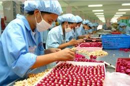 Hàng năm, các doanh nghiệp, cơ sở sản xuất thu hút khoảng hơn 1 triệu lao động - tinkinhte.com
